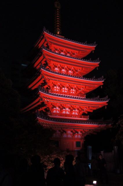 2013東長寺ライトアップ2_1.jpg