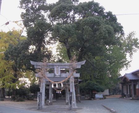 oimatsu1_1.jpg