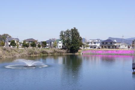 三兼池公園_1.jpg