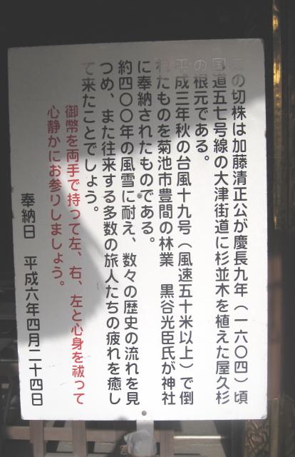 菊池神社3_2.jpg