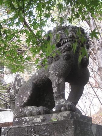 菊池神社6.jpg