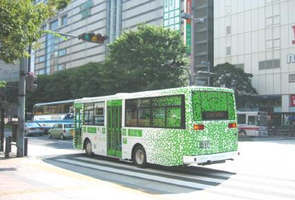 greenbus2.jpg
