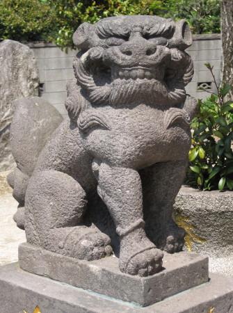 haniyasukoma10.jpg