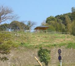 mizuki6.jpg