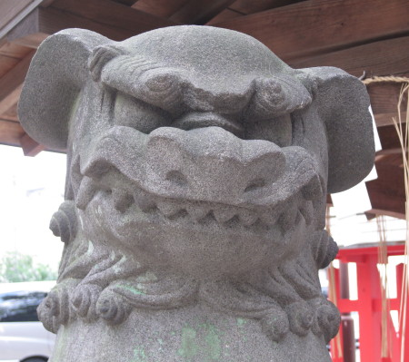 wakamiyakoma17_1.jpg