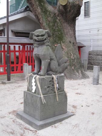 wakamiyakoma1_1.jpg