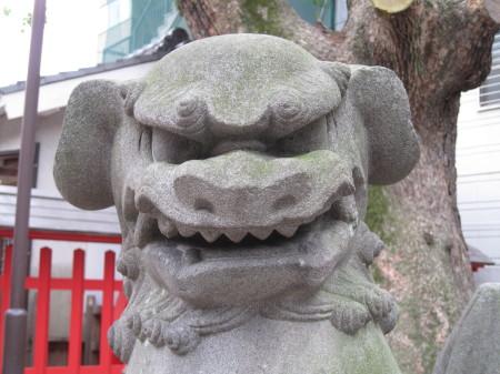 wakamiyakoma3_1.jpg