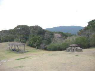 yakigome5.jpg