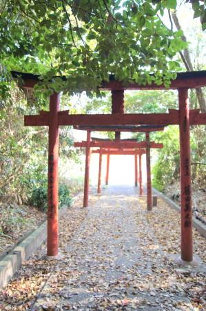大嶽神社狛狐8_1.jpg